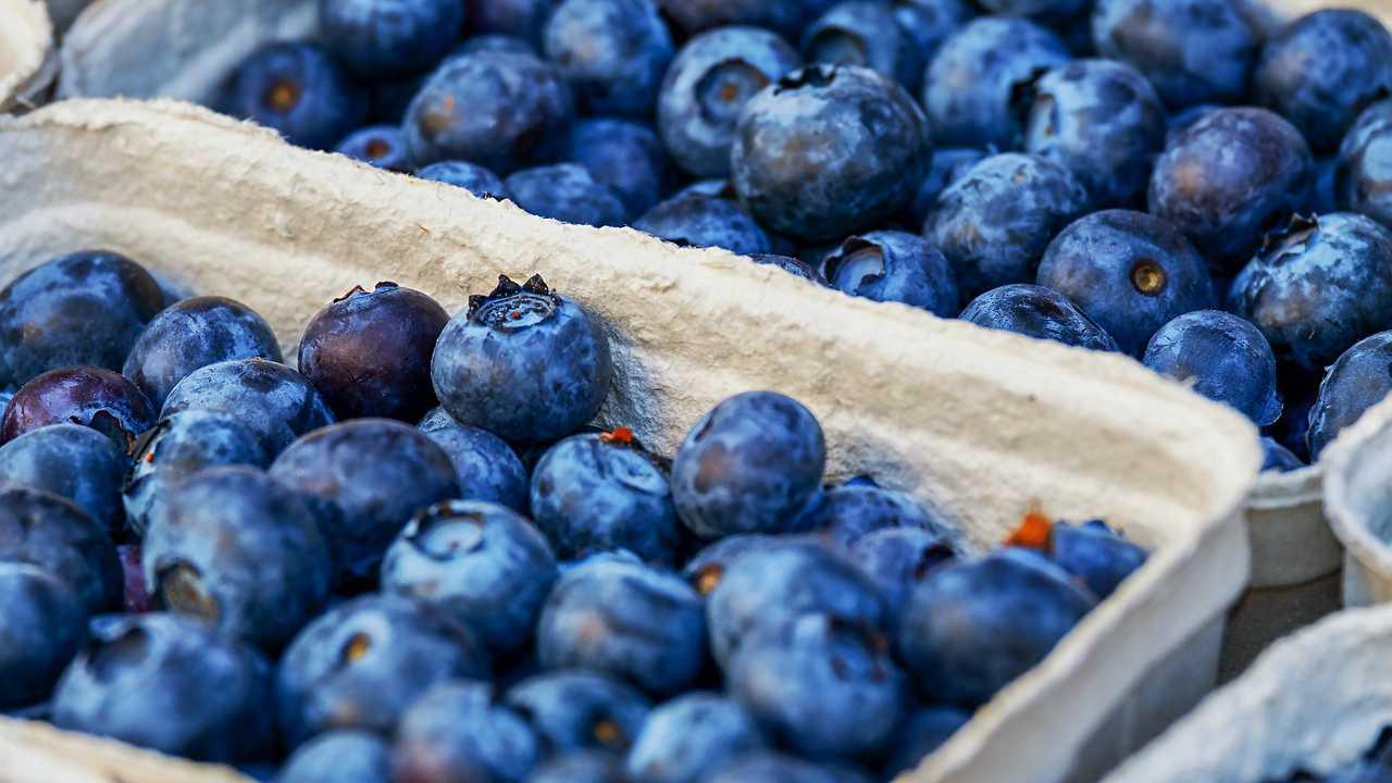 Blueberries, food, generic-873777806
