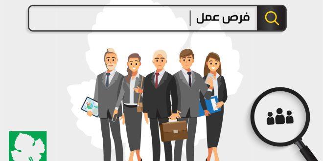 وظائف عن بعد في قطر