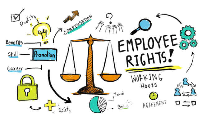 حقوق الموظف فى القطاع الخاص