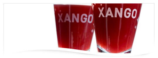 mangosteen_juice_ingredients1