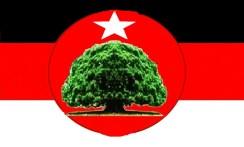 kwo flag