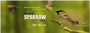 World Spparow Day