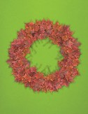 Maple Wreath holiday art