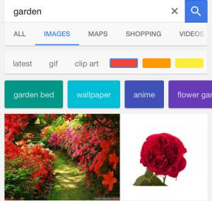 Google mobile image search filters screenshot 2