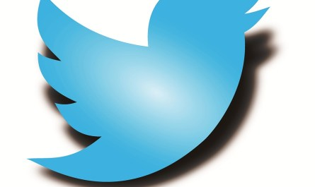 Twitter advanced privacy controls