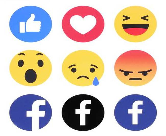Facebook account deletion grace period