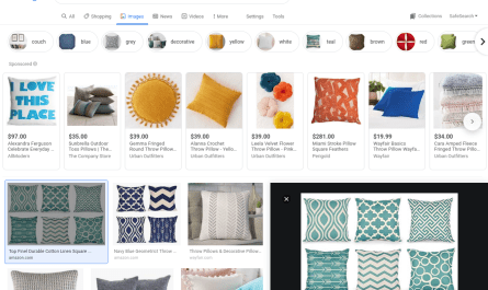Google Images redesign features shopping