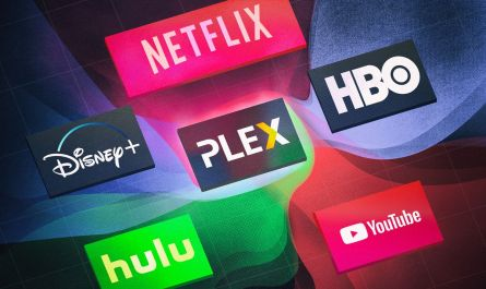 streaming service password sharing