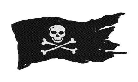 Homeland Security and Europol Bust Notorious Movie Pirates
