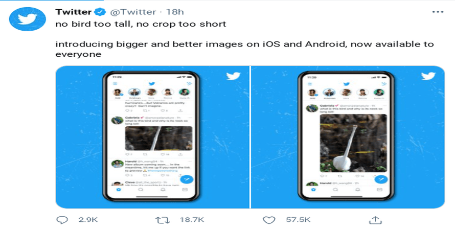 Yes, Twitter Really did Remove its Auto-Cropping Tool for both Android and iOS, so Vertical Photos can be Freely Uploaded
