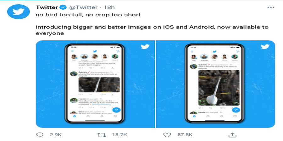 twitter-removes-its-automatic-image-cropping-on-android-and-ios