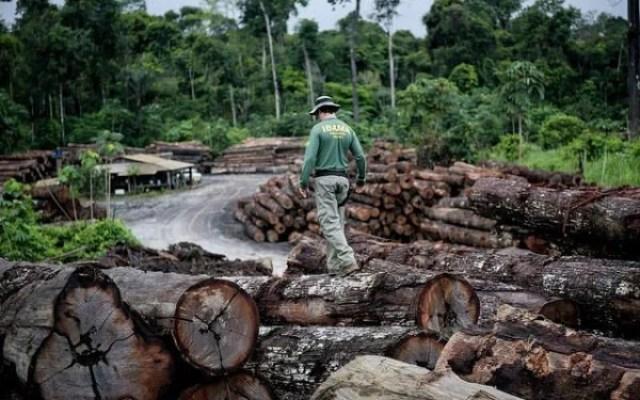 Amazônia em disputa