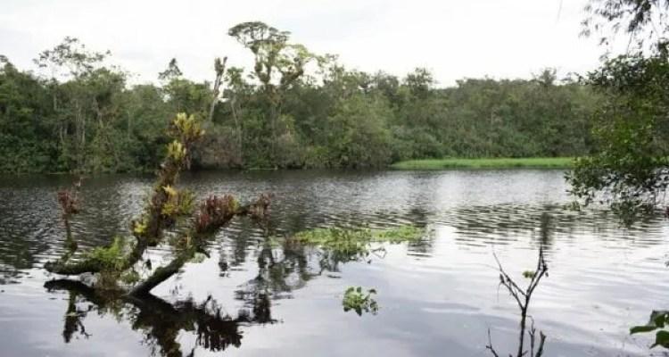 Biodiversidade preservada