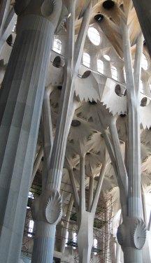 Sagrada Família Photo, Gaudi, Barcelona Spain