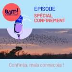 Episode spécial confinement – Confinés, mais connectés