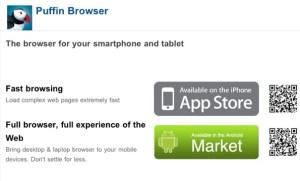 Puffin web browser permet de lire du Flash sur l'iPad 2. Pour dépanner.