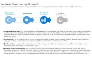 Les différentes branches de Windows 10.