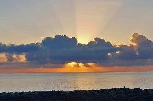 Sunrise maintient péniblement en vie certains de ses coûteux abonnements!