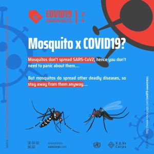 XAXs Covid19 mosquito and awareness poster