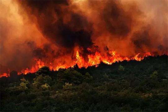 Πυρκαγιά στη Βορειοανατολική Αττική