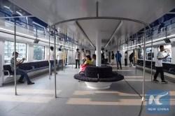 Transit Elevated Bus TEB-1 (2)