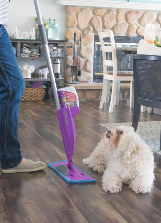 mapping the floor and a dog | Xcellence Inspection Services | floor cleaning Chicago