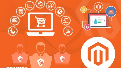 Why do you need a Magento Web Store