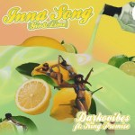Darkovibes ft. King Promise – Inna Song (Gin and Lime)