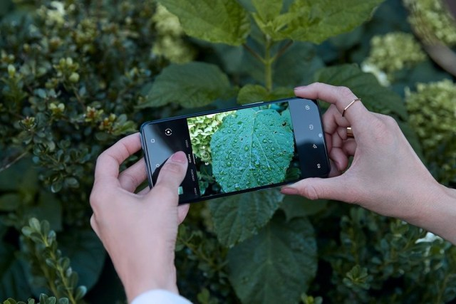 OnePlus 7T Macro Photography