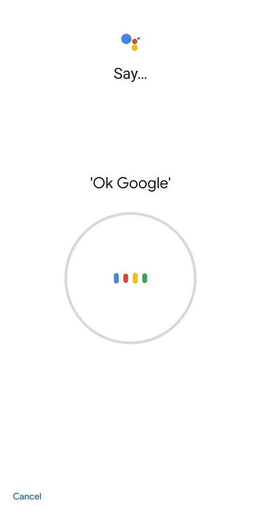 Google Assistant - Ok Google training