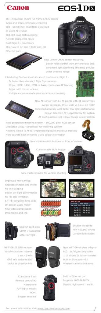 Canon-1DX-331x1024 Canon DSLR's fight back.