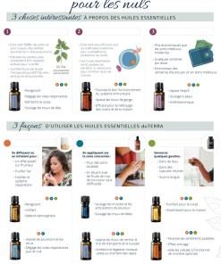 Les huiles essentielles pour les nuls (PDF)