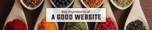 Key ingredients of a good website