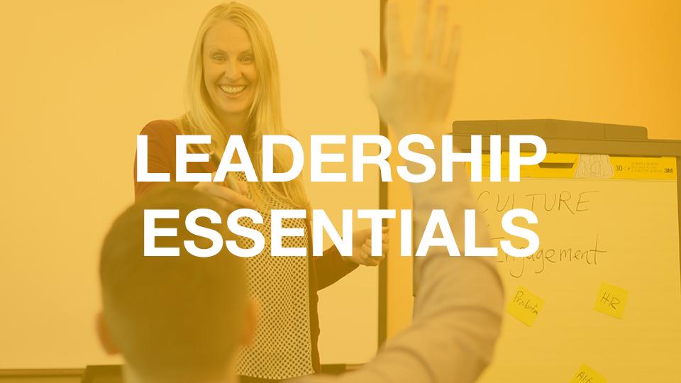 Next Level Leadership web-based course