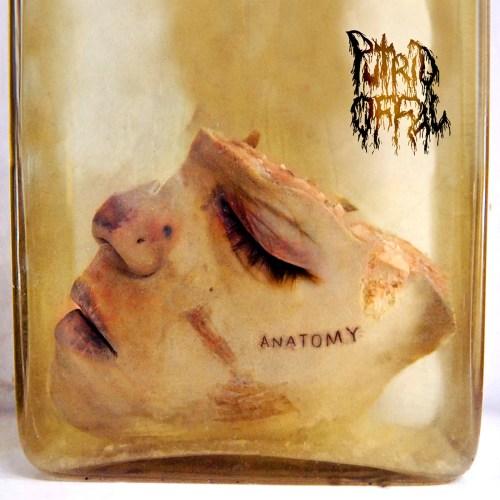 "PUTRID OFFAL ""Anatomy"" [XKR003]"