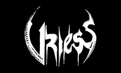 Vriess logo