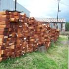 """Dato Curioso: ¿Por qué decimos """"Toco madera"""" para tener buena suerte?"""