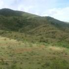 Destina CONAFOR 10 mdp para combatir erosión de suelos en la Mixteca