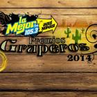 Premios Gruperos 2014, ¡Vota aquí!