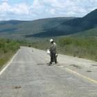 Solicitan a legisladores etiquetar recursos para carretera Huajuapan – Mariscala