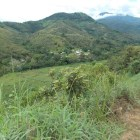 Libera Nopalera a comunero de Zimatlán