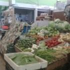 Incrementan precios de frutas por temporada invernal