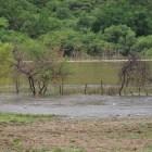 A su máxima capacidad presa de Boqueroncito en Tehuitzingo