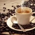 Cafeticultores de calidad Esperan las denominadas aguas frías