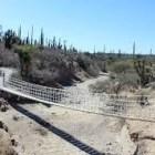 REPORTAJE. San Juan Raya, donde los fósiles tienen vida