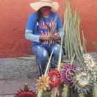 Instalan puestos de artesanía de palma por Domingo de Ramos