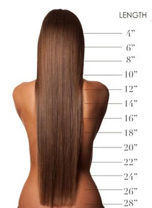 hair length guide xex hair gallery chicago loop hair salon