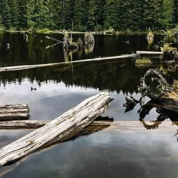 Snag_Lake