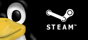 linux steam