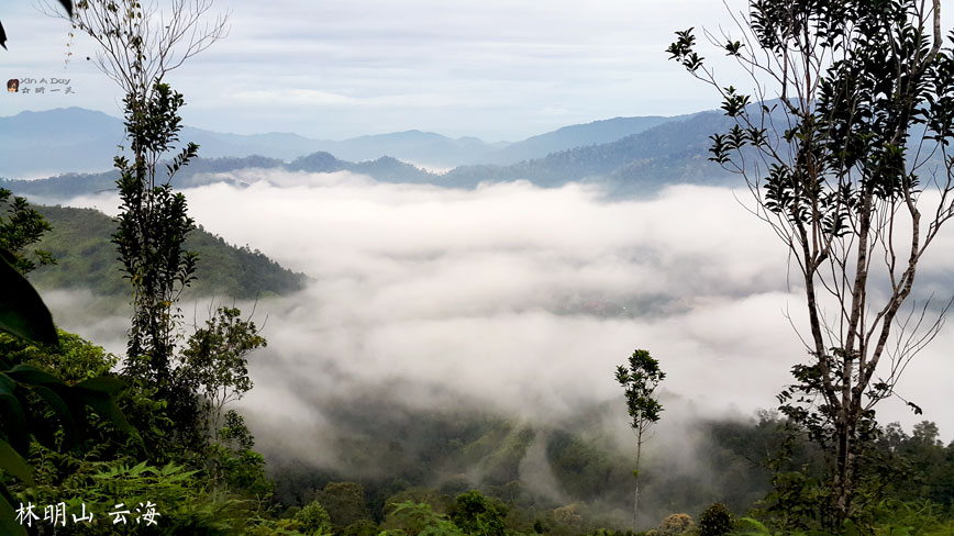 bukit-panorama-2